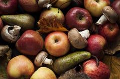 Autumn still-life Stock Photo