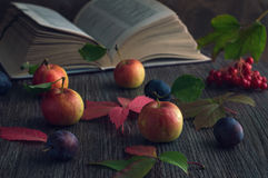 Autumn still life with apples and a book. Art work in a low key with autumn fruits. stock photography