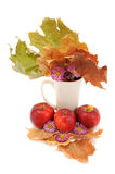 Autumn Still Life, apples, leaves, chrysanthemums on a white bac Stock Photo