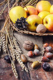 Autumn still life with apples and nuts Royalty Free Stock Photos