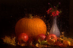 Autumn still life with apples Royalty Free Stock Photos