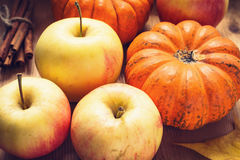 Autumn still life with apples and pumpkins stock photography