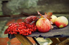 Autumn still-life Royalty Free Stock Photo