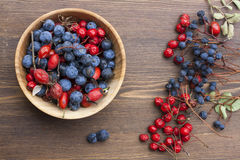 Autumn still life with autumn berry on wooden background, closeup Royalty Free Stock Image