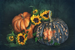 Autumn still life. Pumpkins and sunflowers on a dark background Stock Image