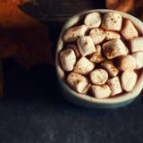 Autumn Still Life Background acogedor con la taza de cacao caliente con whi Imagen de archivo libre de regalías