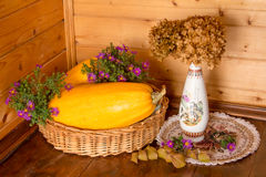 Autumn still-life. Beautiful autumn still life consisting of vegetables, flowers, and leaves Royalty Free Stock Photography