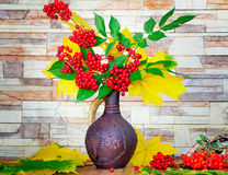 Autumn still life: berries and autumn leaves in a ceramic vase. Stock Images