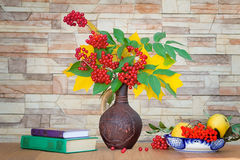 Autumn still life: berries and autumn leaves in a ceramic vase. Royalty Free Stock Images