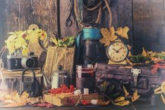 Autumn still life with books, vintage suitcase. toned photo royalty free stock photography