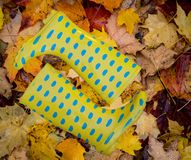 Autumn still life from bright yellow rubber boots with brown lea royalty free stock image
