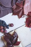 Autumn still life in burgundy colors. Autumn or winter concept. Autumn still life in burgundy colors. Autumn or winter concept, lifestyle blogers. Flat lay, top stock photo