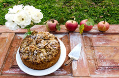 Autumn still life with cake, walnuts, apples and white roses. Rustic style. Stock Images