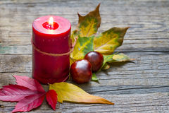 Autumn still life with candle on old boards Royalty Free Stock Photo