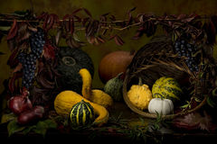 Autumn still life of colorful pumpkins. Decorative pumpkins taken by methode of light brush Royalty Free Stock Photo