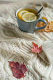 Autumn still life composition with cup of tea with lemon and autumn leaves Royalty Free Stock Image