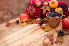 Autumn still life. Autumn composition on a wooden background. Still life, food and drink, apples, pumpkin, nuts, cone, tea Stock Image
