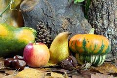 Autumn Still Life con las calabazas, Apple, la pera, las castañas, Pinecone y las hojas Fotos de archivo