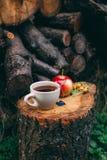 Autumn Still Life con té, la manzana y la perro-rosa calientes Imágenes de archivo libres de regalías