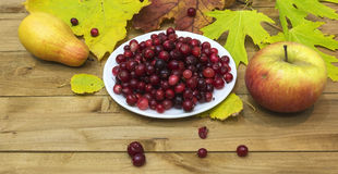 Autumn Still Life. Cranberries on a white plate, autumn leaves a Stock Photo