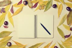 Autumn still life. Creative frame whith leaves, notebook royalty free stock image
