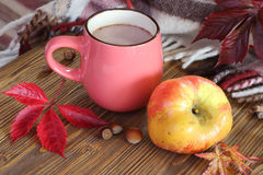 Autumn still life with a cup of cocoa. Royalty Free Stock Image