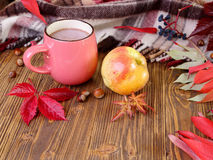 Autumn still life with a cup of cocoa. Royalty Free Stock Images