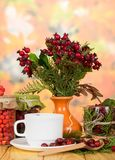 Autumn still-life from cup of herbal tea and berries on background of red leaves stock image
