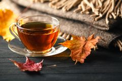 Autumn still life with cup of tea, plaid and leaves on wooden ba stock images