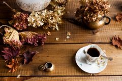 Autumn still life with dried leaves end flowers stock photography