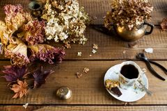 Autumn still life with dried leaves end flowers royalty free stock images
