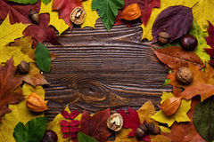 Autumn still life, fall leaves, gifts of autumn, copy space, woo. Den background, walnuts, maple leaves - autumn composition from top. Free space for text Royalty Free Stock Photography