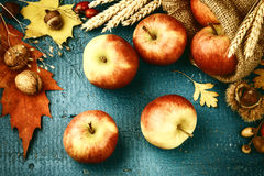 Autumn still life with fresh apples and fall leaves over blue wo Royalty Free Stock Image