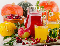 Autumn still life with fresh juice  and vegetables Stock Photography