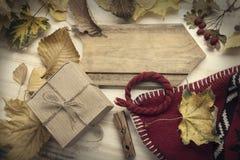 Autumn Still Life gebreide GLB-giftbladeren en droge bessen vector illustratie