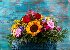 Autumn Still life. Autumn Still life with gerbera and sunflowers royalty free stock images
