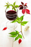 Autumn still life: glass of red wine and grape leaves Stock Image
