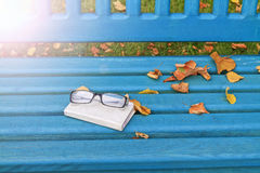 Autumn still life with glasses and Notebook  sunny hotspot. Autumn still life with glasses and Notebook, nostalgic mood notes, with sunny hotspot Royalty Free Stock Images