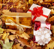 Autumn still life with group gift box. Royalty Free Stock Photo