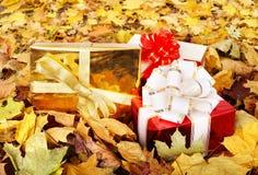 Autumn still life with group gift box. Stock Photos