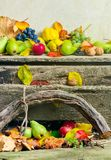 Autumn still life with harvest in leaves. Autumnal harvest still life with apples, pears, grapes, nuts and berries in foliage on wooden board and white wall stock image