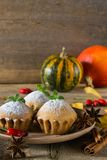 Autumn still life. Homemade cupcakes with powdered sugar with cinnamon sticks, anise stars, pumpkins, berries of rosehip and autum Stock Images