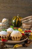 Autumn still life. Homemade cupcakes with powdered sugar with cinnamon sticks, anise stars, pumpkins, berries of rosehip and autum Stock Photos