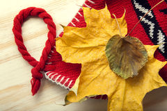 Autumn Still Life knitted cap gift leaves and dried berries Royalty Free Stock Image