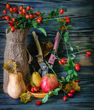 Autumn still-life with large group Royalty Free Stock Images
