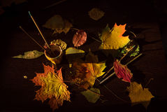 Autumn still life. Leaves and brush Royalty Free Stock Photography