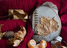 Autumn still life with leaves Stock Photos
