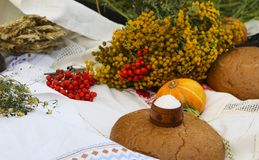Autumn still life - loaf, pumpkin, mountain ash, tansy, wheat ears, salt,on a white tablecloth with lace Royalty Free Stock Photo