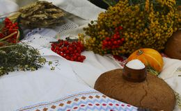 Autumn still life - loaf, pumpkin, mountain ash, tansy, wheat ears, salt,on a white tablecloth with lace Stock Photography