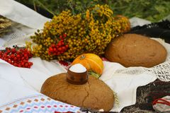 Autumn still life - loaf, pumpkin, mountain ash, tansy, wheat ears, salt,on a white tablecloth with lace Royalty Free Stock Photography